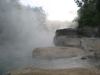 Сельва Амазония